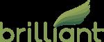 BRI_logo
